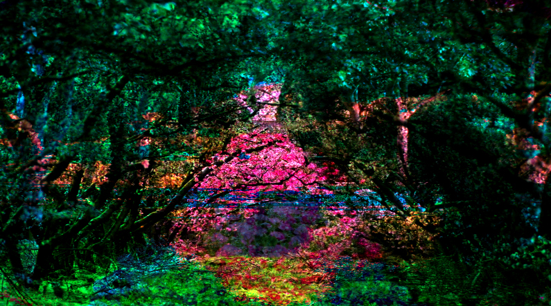 Garden, Flower and Path Art