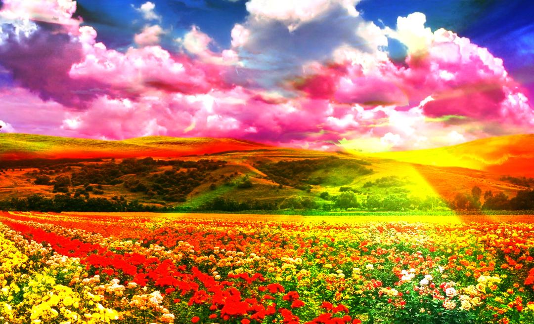 Wild Flowers, Impressionism