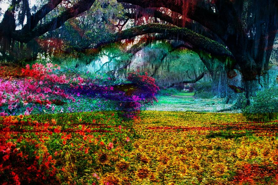 willow garden flowers impressionism