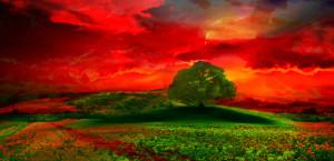 Impressionism Sunset Tree