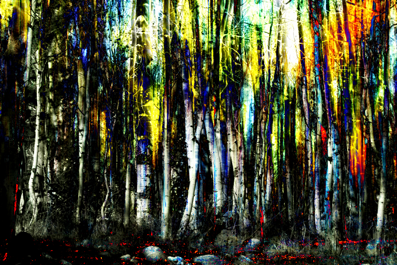 Forest Woods Impressionism