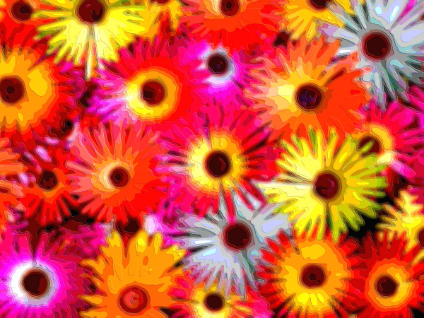 Flower Art Sale Daisies