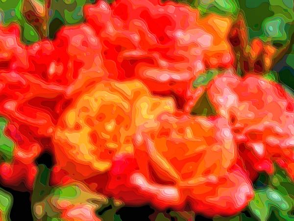 Flower Art Sale Roses