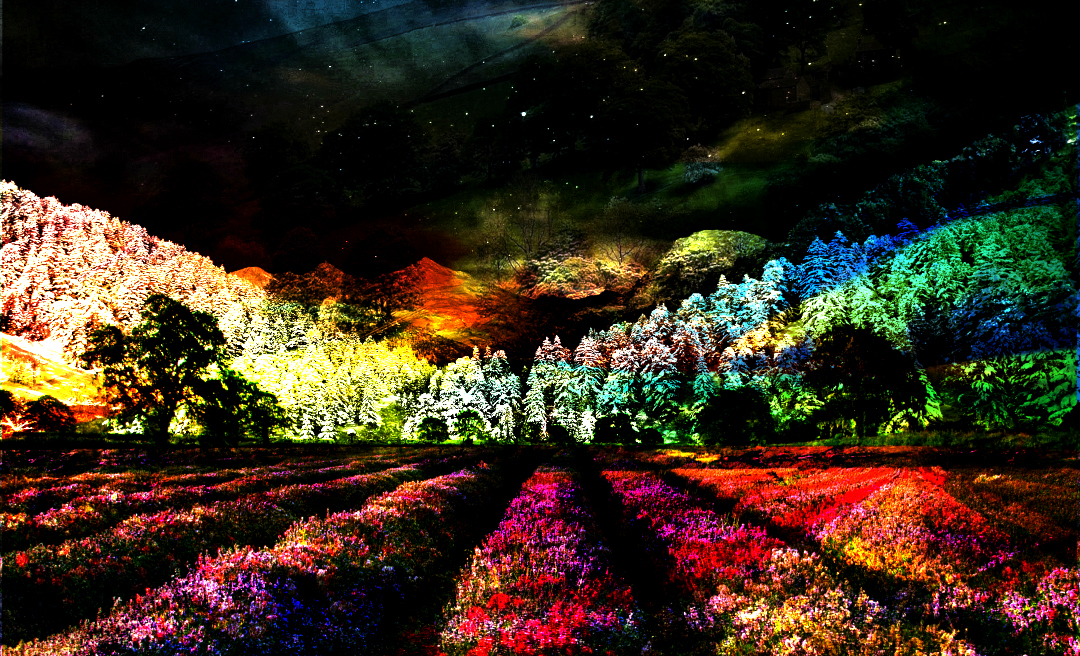 Fine Digital Art Nightscape
