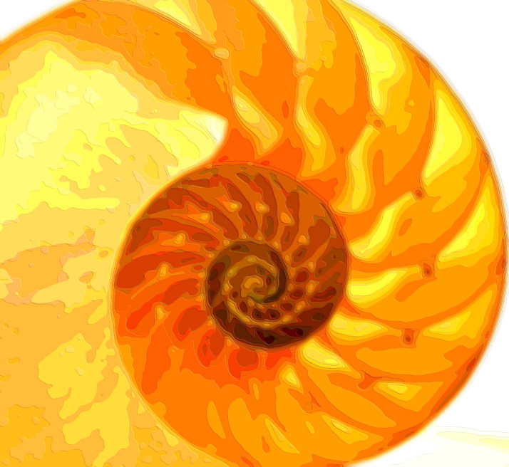 Golden Spiral Layer Art