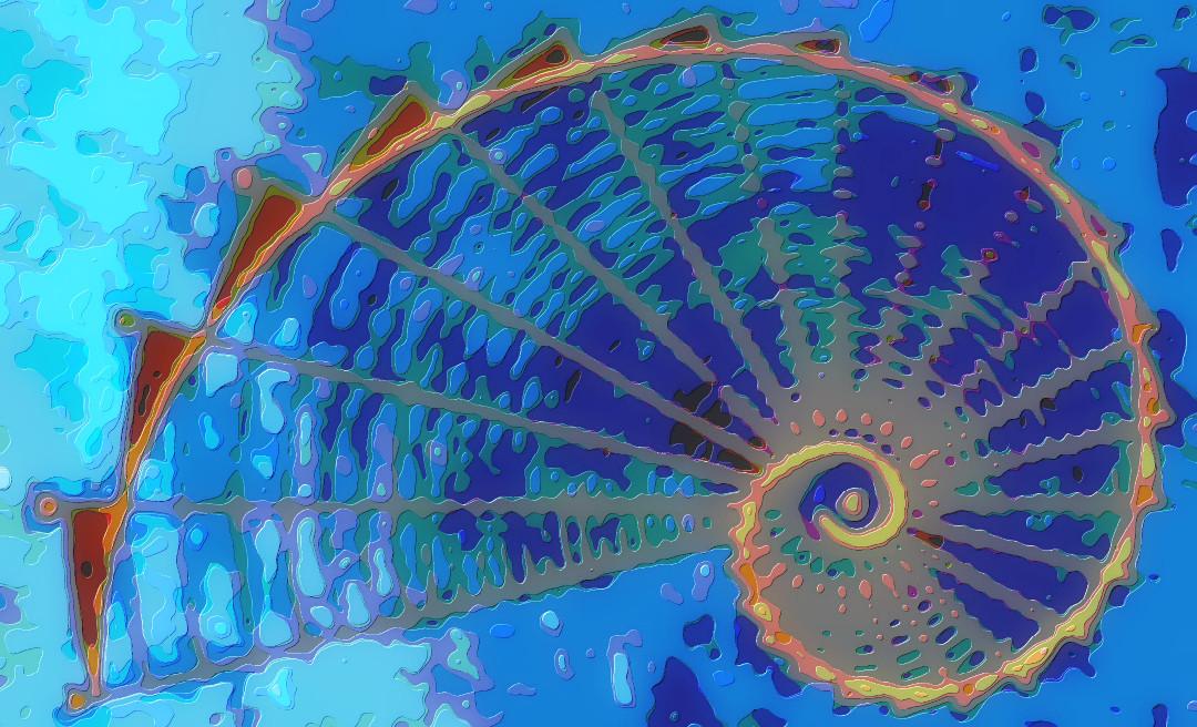 Abstract Art Golden Ratio