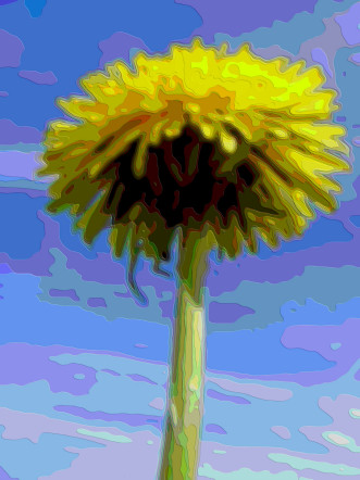Flower Layer Art Dandelion