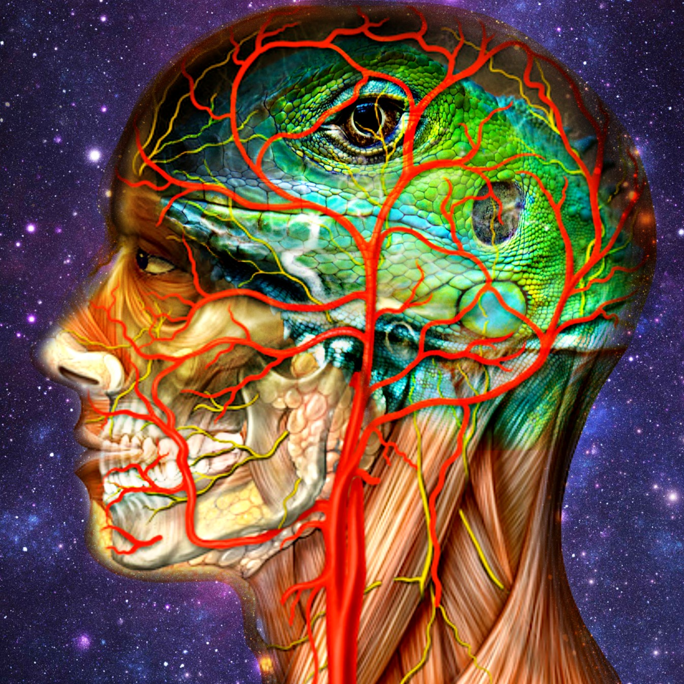 Art Human Anatomy Lizard Brain Fine Digital Art